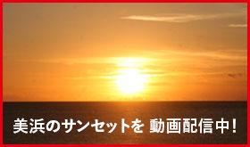 美浜サンセットライブ