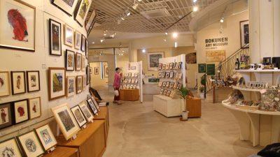 AKARA gallery(アカラ ギャラリー)
