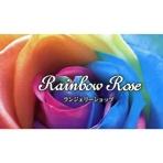 Rainbow Rose (レインボーローズ)